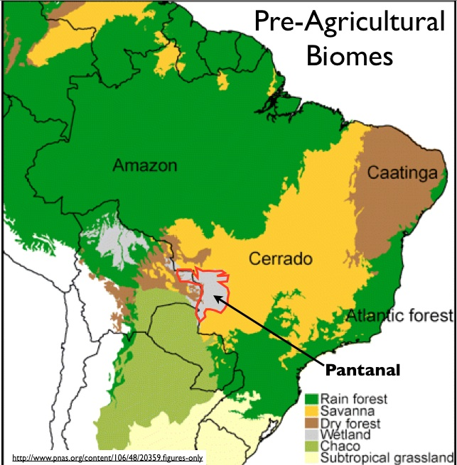 Bio Tech Farming In Brazil And The Global Potash Boom