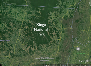 Satellite Image Xingu National Park