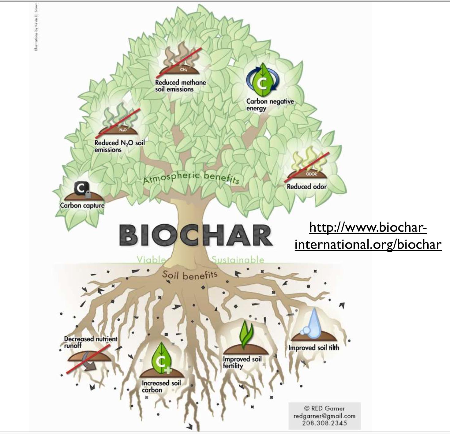 pyrolysis of biomass thesis