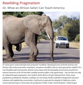 Pragmatic Rewilding