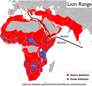 Lion Range Map
