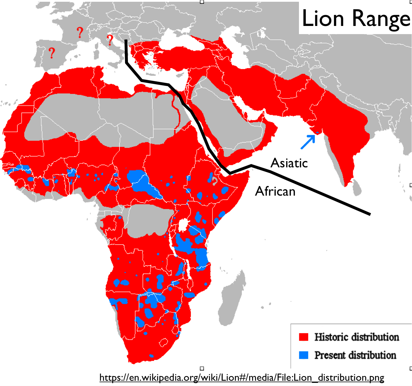 Third africa india forum summit meeting of the lions geocurrents although the indian or asiatic lion is confined to one wildlife refuge in the state of gujarat and numbers only around 500 individuals the animal is gumiabroncs Images