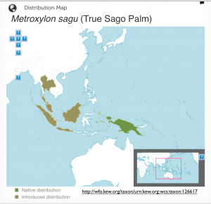 sago palm map