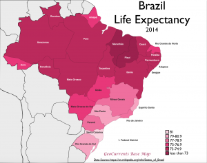 Brazil Life Expectancy Map