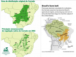 Cerrado agriculture map