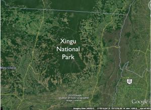 Satellite Image Xingu National Park