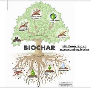 Biochar1