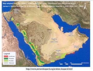 Arabian Leopard Map