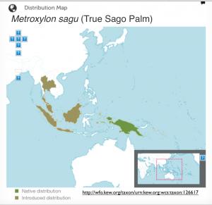 sago palm map