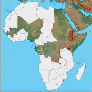 Africa Customizable map 4