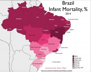 Brazil Infant Mortality Map